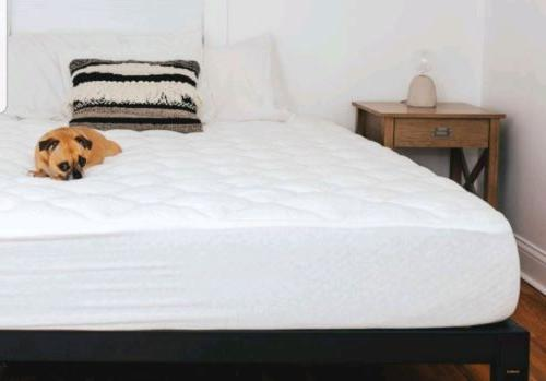 tencel mattress pad with fitted skirt extra